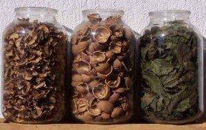 Грецкий орех, как лекарство против грибка ногтей 4